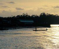 La bahía de Tumaco es una de las que recibe mayor cantidad de afluentes fluviales y en ella se desarrollan diversos ecosistemas estuarinos, donde hay una abundante riqueza íctica.