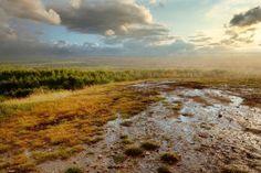 Pustynia Błędowska. Pustynia wciśnięta między dwie wyżyny: Śląską i Olkuską, stanowi największy w Polsce obszar lotnych piasków, które przemieszczają się razem z wiatrem, zmieniając ukształtowanie powierzchni terenu. Do końca 2013 roku można zwiedzać tylko jej północną część.