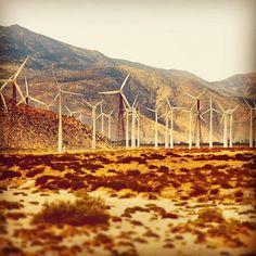 A common sight here in Cali! California Love, California Dreamin', Spring Usa, Wind Farms, Riverside County, Coachella Valley, Portfolio Site, Windmills, Golden State