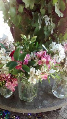 Flores  frascos