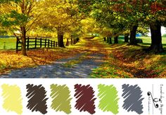 Paleta do Outono
