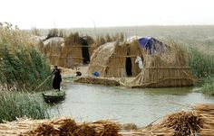Eden Restored - The Mesopotamian Marshes of Iraq, 2015 People have returned to their traditional way of life after they were forced to evacuate the marshes when they were drained in the early nineties by Saddam Hussein. Atrium Design, Urban Heat Island, Urban Setting, Photography Competitions, Bali, Urban Landscape, Way Of Life, The Guardian, Ecology