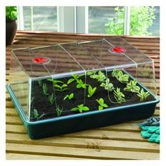 These popular High Dome Propagators come in a range of sizes and bring easy propagating and plant growing to any greenhouse or potting shed http://www.harrodhorticultural.com/high-dome-propagator-lids-and-bases-pid8374.html High Dome Propagator Lids and Bases