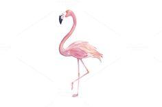 Watercolor Flamingo by Natikka Art on @creativemarket