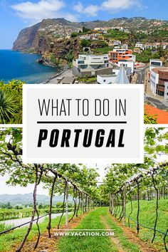 What to do, see, eat and more for a long weekend in Portugal!