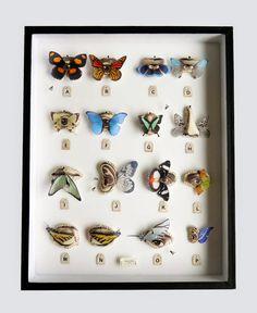 Lyndie Dourthe: Yeux-papillon