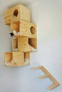 Would so do this for my cat