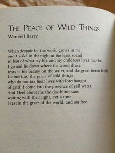 The Peace of Wild Things. Wendell Berry focuses on nature and its peace in his poems while in his prose, he writes about environmental issues and issues he believes strongly in. Poem Quotes, Words Quotes, Life Quotes, Sayings, Wild Things Quotes, Wild And Free Quotes, Wisdom Quotes, The Words, Cool Words