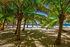 La Playa , Quebradilla , Puerto Rico