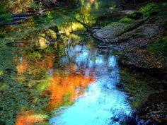 Yodogawa and colored leaves ( Yakushima ,Japan ) Author: Hitomi Zama.