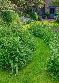 A front garden can be said as a magical garden as this is the path which guests take before they approach you. You can use your front garden to your Backyard Garden Landscape, Small Backyard Gardens, Small Gardens, Outdoor Gardens, Raised Gardens, Tropical Backyard, Garden Fun, Garden Cottage, Home And Garden