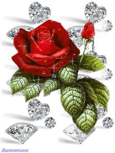 animated rose picture | Download Red Rose Shining Animated Wallpaper