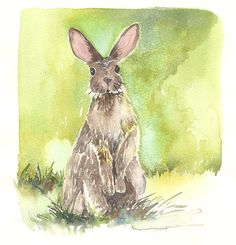 R is for Runny Babbit  Rabbit  Watercolor by AmyWoodsWatercolors, $25.00