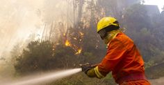 Valter Correia denuncia fogos postos na Madeira