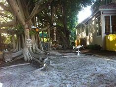 My Garden Longboat Key Florida · Camping CabinsLongboat ...