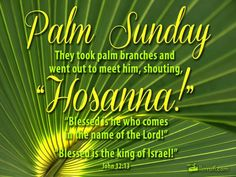 Check out an awesome collection of Happy Palm Sunday Images Easter Sunday Pictures, Quotes Bible Verses & Palm Sunday Messages Cards Wishes Greetings. Sunday Wishes Images, Sunday Messages, Sunday Pictures, Wishes Messages, Holiday Messages, Easter Pictures, Jesus Pictures, Sunday Bible Verse, Psalm Sunday