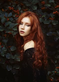 Red Hair fantasy art fashion editorial photography ginger girl female upper body haute couture luxury high fashion portrait red head woman in black dress in leaf and roses in a green bustling baroque garden, color photo, fashion face portrait picture Editorial Photography, Portrait Photography, Fashion Photography, Red Heads Women, Photographie Portrait Inspiration, Girls With Red Hair, Ginger Girls, Copper Hair, Redhead Girl