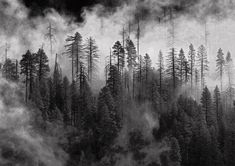 Image result for landscape photography black and white