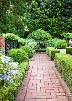 Brick garden path in the backyard of interior design John Banks | backyard | landscape and gardening