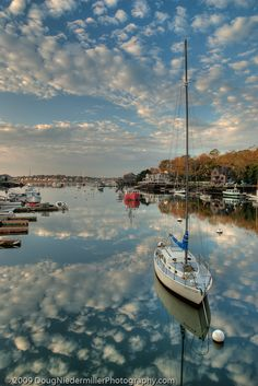 I haven't been to Gloucester in the UK never mind MA. Lobster Cove, Cape Ann, Gloucester, MA. What a great photo.