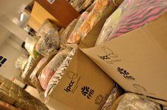 A FAS e o IPCC fizeram o repasse de mil cobertores ao Hospital Erasto Gaertner na manhã desta sexta-feira (26).  O hospital, considerado referência no tratamento do câncer, atendeu cerca de 280 mil pacientes em 2012, sendo 92% pelo Sistema Único de Saúde (SUS).  Para saber como ajudar o hospital, acesse: www.erastogaertner.com.br   Mais detalhes da Doe Calor em: www.doecalor.com.br