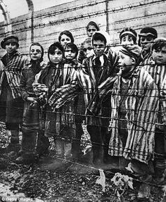Germany's doctors apologise for sadistic experiments Nazi doctors carried out on Jews