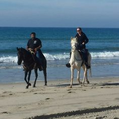 Proven Spots Ranch Mangalarga Marchadors owned and trained by Kendall Melline Marchadors Hermosa de los Cielos and Vaquera do rockink at first camp pendleton endurance ride