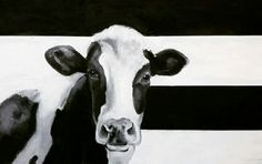 Cow, Animals, Animales, Animaux, Cattle, Animal, Animais