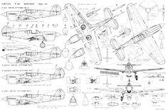 p-40-warhawk-1-gif.121354 (4508×2970)