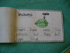 First Grade: writing
