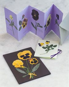 Pressing Flowers and Leaves | Step-by-Step | DIY Craft How To's and Instructions| Martha Stewart