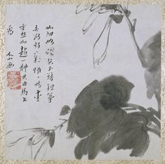 Zhu Da (1626-1705) Album of Flowers and Insects China, Qing dynasty ca. 1681 Album, Painting 11 leaves Ink on paper Each leaf 30.2 x 30.2 cm.