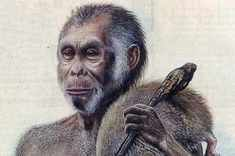 The Hobbit Apparently, there is now ample proof that the so-called 'hobbit' from the Indonesian islands of Flores really existed. Accordingly, the hobbit is said to be like a second cousin to modern humans and the Neanderthals. Early Humans, First Humans, Homo Floresiensis, Human Evolution, Ancient Mysteries, Cryptozoology, Ancient Aliens, Great Stories, History Facts
