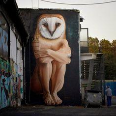 "Street Art Manifesto: ""aLL hoUrs of tHe niGhT by in Zagreb, Croatia . Graffiti Art, Art Manifesto, Art Jokes, Urbane Kunst, Urban Painting, Sidewalk Art, Best Street Art, Classical Art, Owl Art"