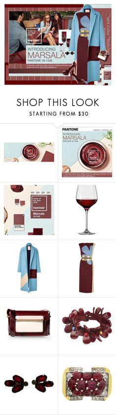 """""""Marsala"""" by halebugg ❤ liked on Polyvore featuring Roksanda Ilincic, Mary Katrantzou, Toast, Sergio Rossi, maroon, colorblock, oxblood, pantone and marsala"""
