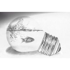 Fish trapped in a light bulb love this