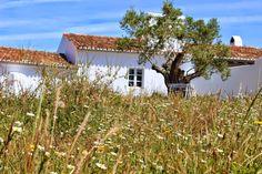 às nove no meu blogue: Casa no Alentejo