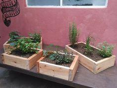 cajones de huerta aromaticas madera/ huertas delta
