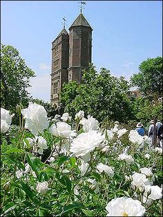 The White Garden created by Vita Sackville-West, poet and writer, and her husband, Sir Harold Nicolson, author and diplomat, at Sissinghurst, Kent.
