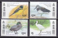 Birds - Hong Kong