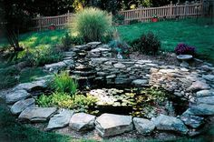 Showcase of Water Gardens and Ponds created designed and built by Backyard Ponds