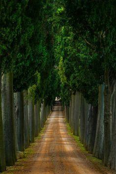 Tuscany,  Italia