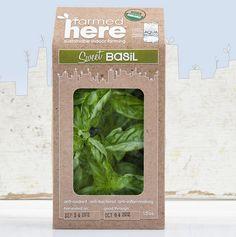 FARMEDHERE LLC SWEET BASIL vertical indoor garden