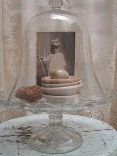 glass cloche vignette