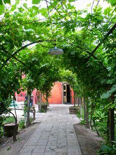 Cava de Cano Winery, Mendoza Argentina | por phxdailyphotolady