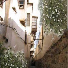 Old Damascus with Jasmin bushes flourishing