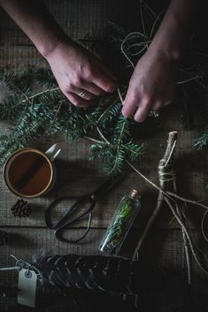 Local Milk | Balsam Fir Syrup + Fennel Rosemary Cookies