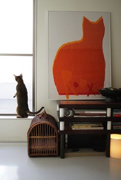 {big orange cat) mirrored by a real cat! Baby Cats, Cats And Kittens, All About Cats, Crazy Cat Lady, Cool Cats, Cat Art, Cat Lovers, Dog Cat, Pet Pet