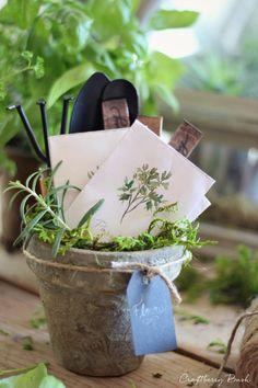 DIY Gift Ideas for the Gardener - Printable Watercolor Seed Packets by Craftberry Bush Herb Seeds, Garden Shop, Garden Cottage, Cactus Y Suculentas, Seed Packets, Garden Gifts, Clay Pots, Herb Garden, Herb Farm