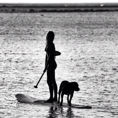 Possible SUP with dog silhouette photo.